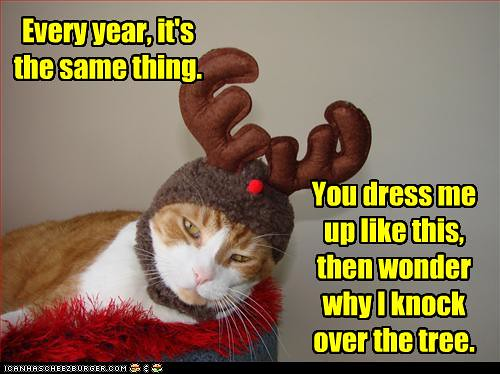 Funny Reindeer Meme : Funny pictures cat is dressed as reindeer rikki's refuge flickr