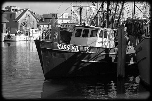 Viking village fishing fleet barnegat light long beach for Viking fleet fishing report