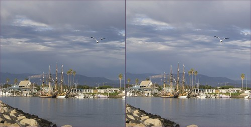 Tall Ships seagull cross view 3d | by jaysdesk