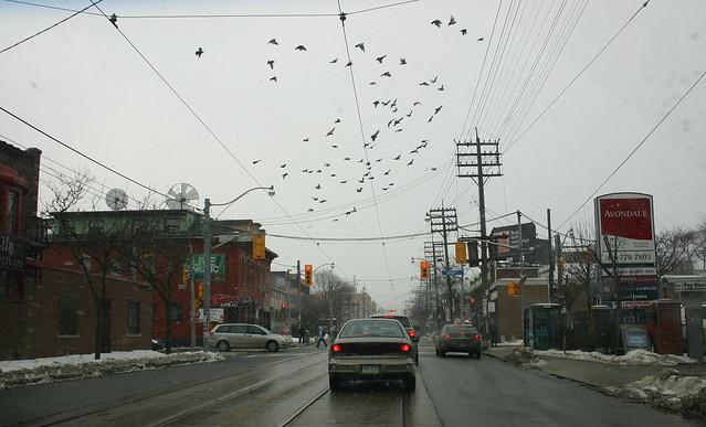 Toronto 12.02.2011