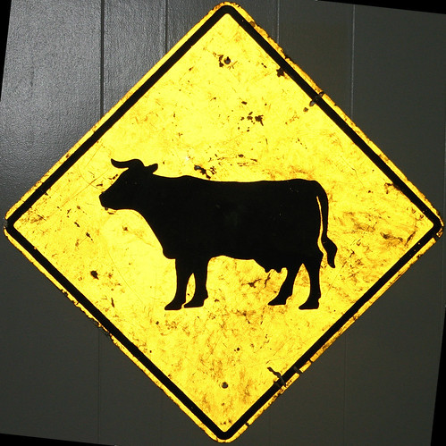 Cow Sign | by mrbill