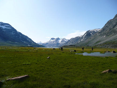 The real green of Greenland
