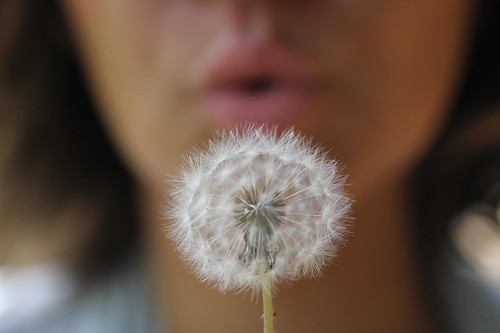 Blow my Mind! | by . Marzo | Photography .