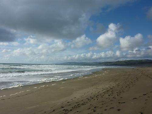 Salmon Creek Beach | by Frank Synopsis