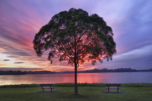 Symmetry, Upper Seletar Singapore | by wandervox