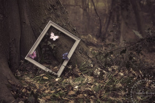 'Imagination will often carry us to worlds that never were. But without it we go nowhere' -  Carl Sagan | by *iNiNa* Tracey Christina Photography