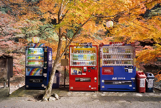 Kyoto_20101020_E100G-Roll-27_28 | by Lordcolus