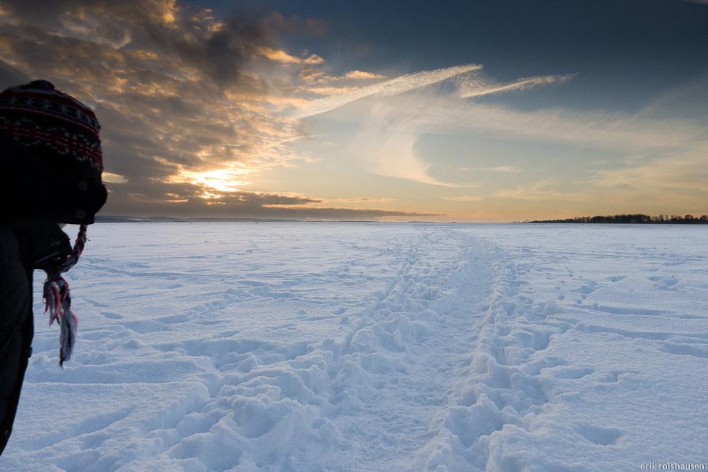 Snowy Plains Kennels Dog Sled Rides