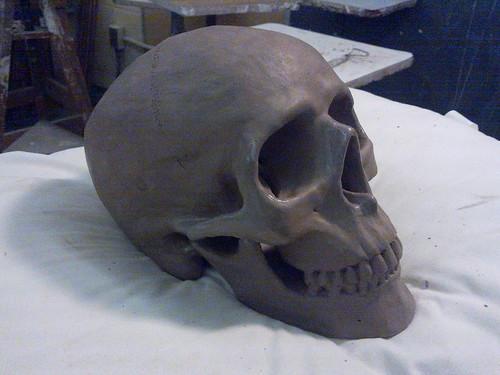 Skull  Clay