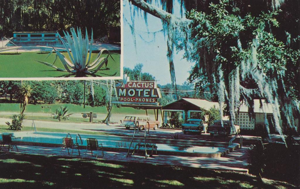 Cactus Motel - Tallahassee, Florida