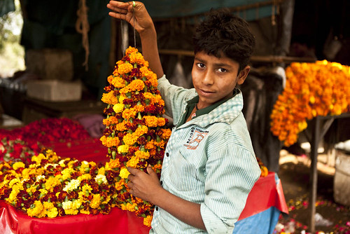 flower market in india business report 2011 camaro