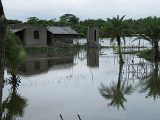 UDDT withstanding flooding from Cyclone Aila 2009 | by Sustainable sanitation