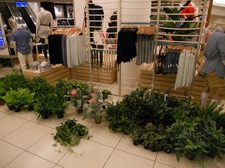 GAP STORE VERTICAL GARDEN | by BethGrowsgreen