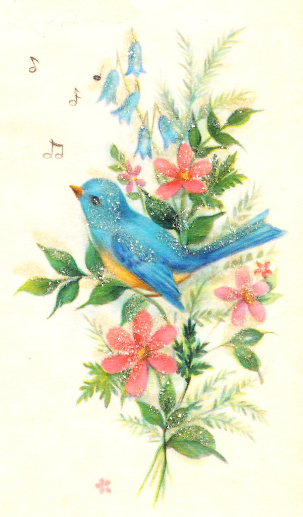 Bird from vintage greeting card bluebird image from a vint flickr bird from vintage greeting card by b kay m4hsunfo