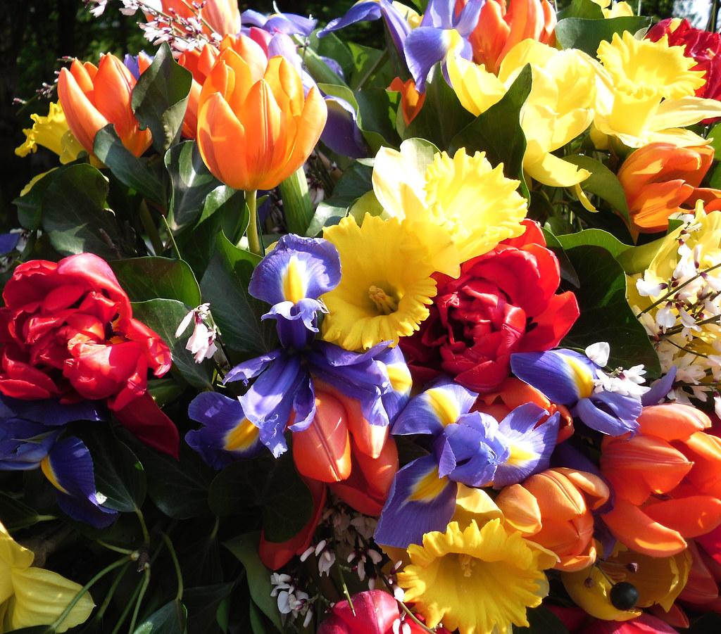 Frühlingsstrauß bunter frühlingsstrauß 017 5407 roba66 flickr