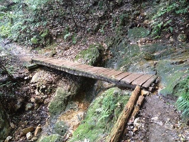 金華山 唐釜ハイキングコース 木橋