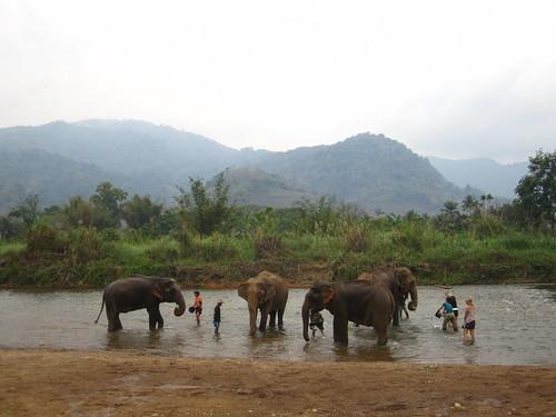 Elephant Nature Park Chiang Mai Map