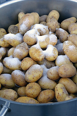 salted potatoes | by David Lebovitz