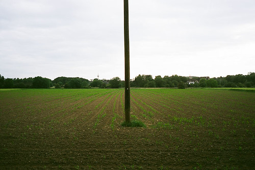 Field | by Hunchentoot