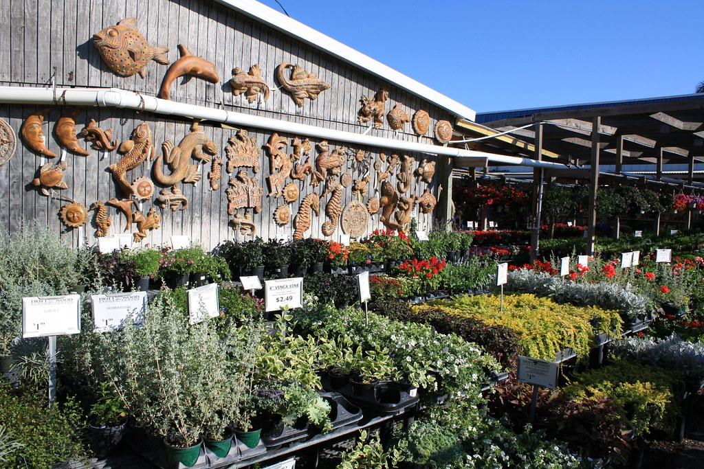 Delicieux ... Driftwood Garden Center Naples, Fl | By In A Juice Box (Lori Shaffer)