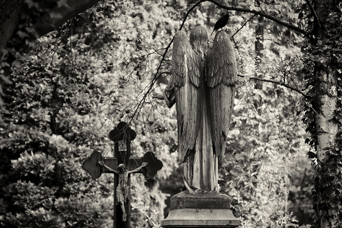 Van Morrison – Across the Bridge Where Angels Dwell Lyrics ...