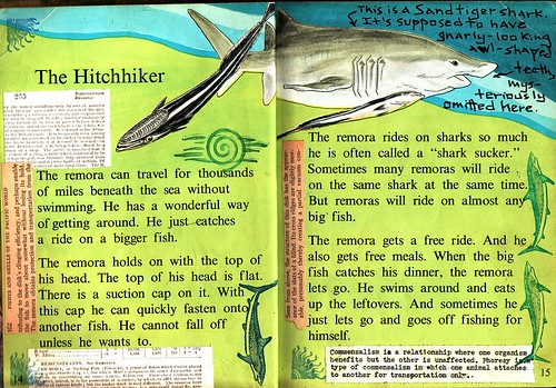 Altered children 39 s book about fish remoras pp 1 2 flickr for Children s books about fish