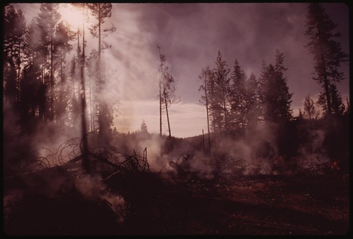 "In August, 1973 a major forest fire swept through 17,470 acres of the western slopes of the Sierra Mountain Range near Sonora. Trees still burn on fringe of cleared area. This part of the burn area is called ""granite fire,"" September 1973 