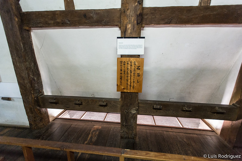 Castillo-Matsue-81