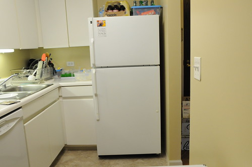 refrigerator with closed door | by peapod labs