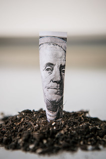 Planting Money | by Tax Credits