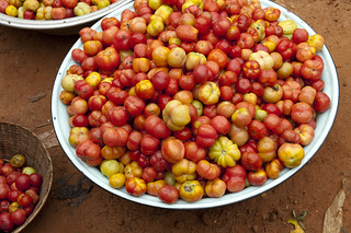 Bowl of tomatoes | by World Bank Photo Collection
