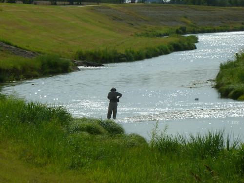 Fly fishing on the trinity river with the fort worth fly for Trinity river fishing spots