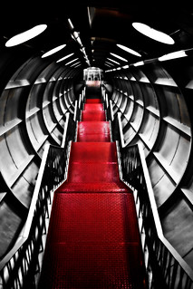 Red Carpet | by tristanlb