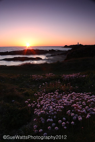 Godrevy Sunset | by giggirl 1