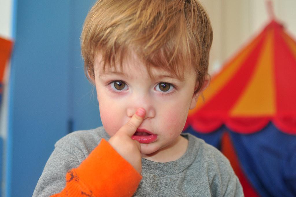 نتيجة بحث الصور عن touching nose
