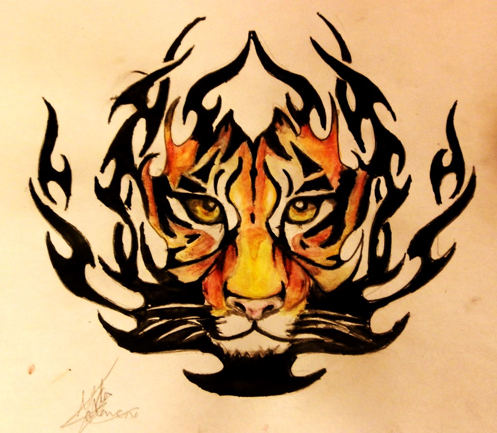 Tatuaje Tigre Tribal tigre-tribal | lápices acuareables. | marta carreño tattoos | flickr