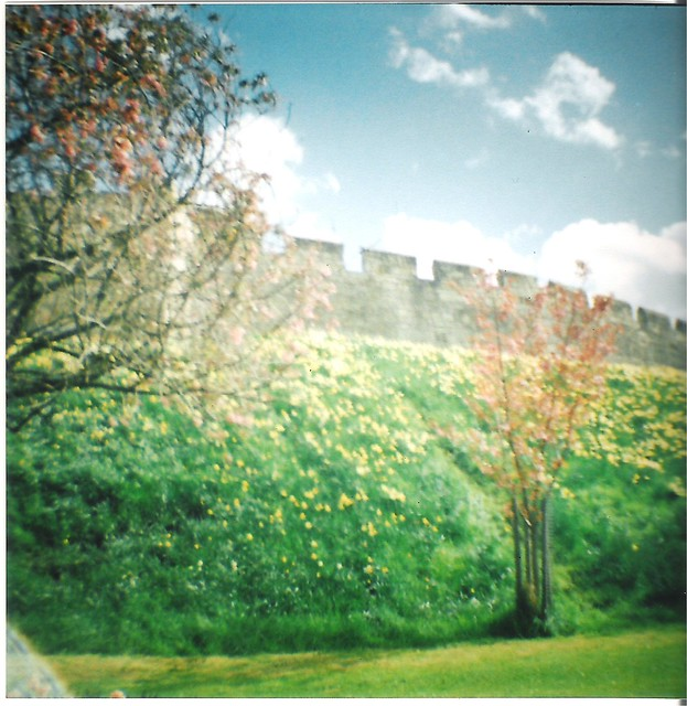 Diana Mini - York Walls