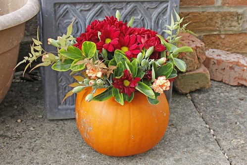 Autumn Floral Display in a Pumpkin