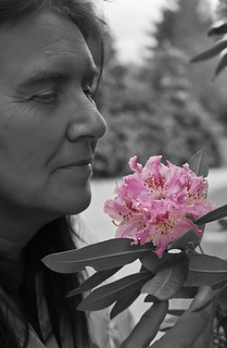 Nina & The Rhododendron | by Steve's Photography :-)