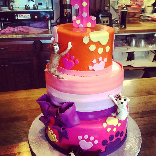 1st Birthday Cake Dog Design Dogs Dog Kid Child Bab Flickr