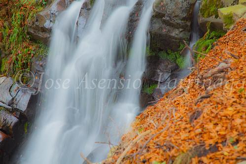 Parque natural de Gorbeia #DePaseoConLarri #Flickr      -2030