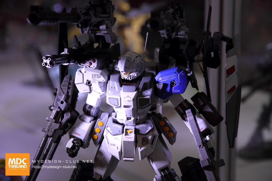 GBWC-TH-2016-002