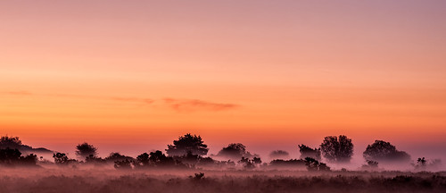 New Forest Sunrise | by digital_jeffg