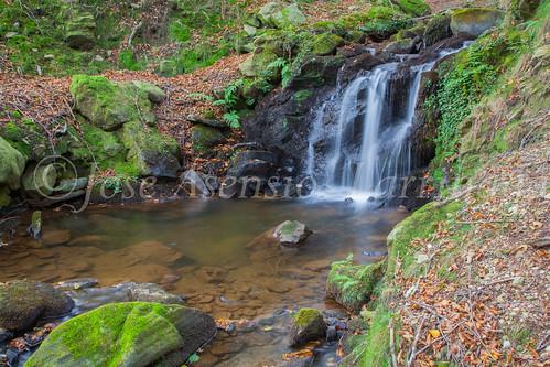 Parque Natural de #Gorbeia #DePaseoConLarri #Flickr      -1472