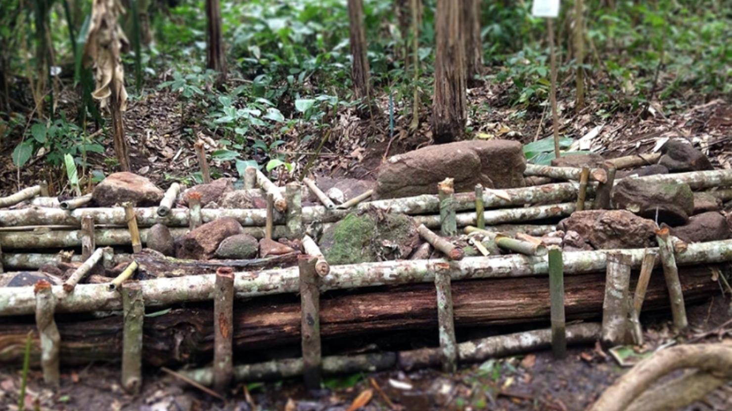 สร้างฝายประชารัฐในป่าอนุรักษ์ ยากกว่าที่คิด