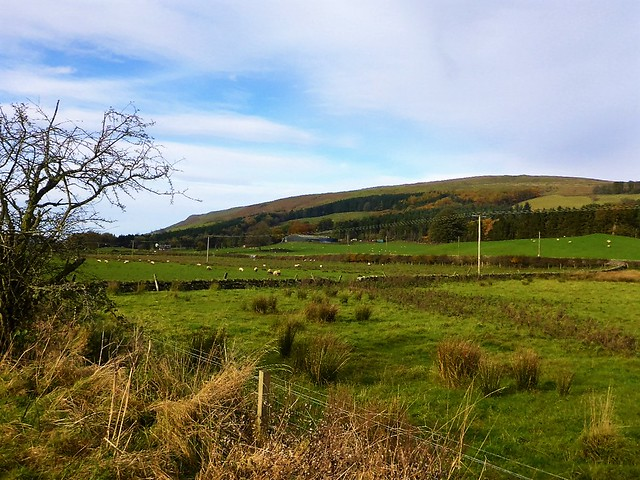 Strathblane Landscape, Scotland