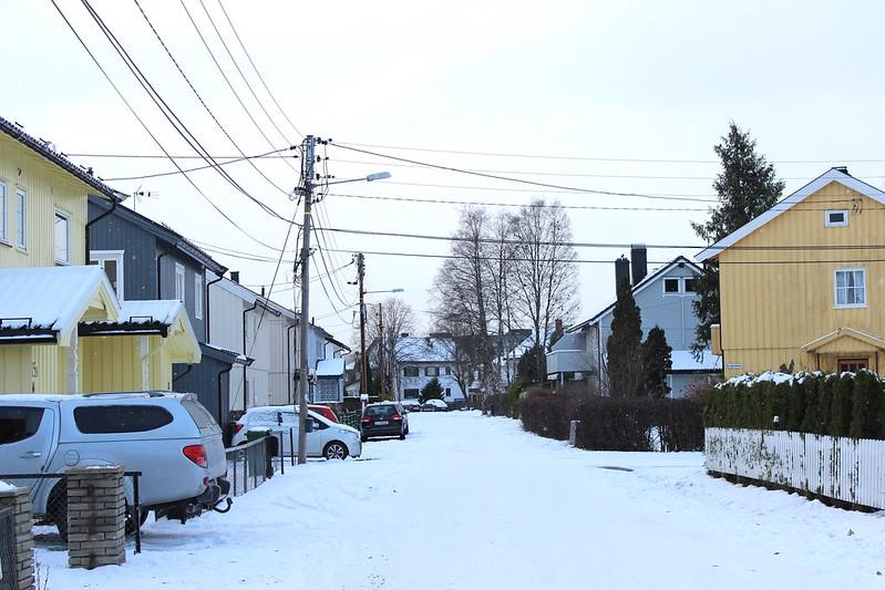 First snow / etdrysskanel.com