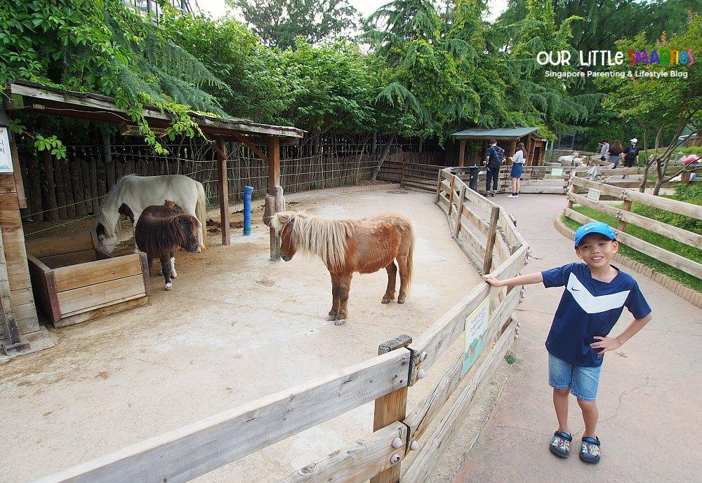 seoul children's grand park 2