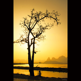 Solitude at golden sunset | by -clicking-