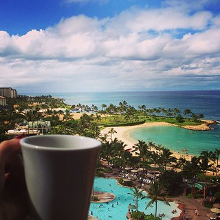 Kona Coffee Mornings | by Erica Schoonmaker